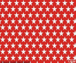 Puzzle Étoiles blanches