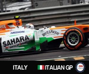 Puzzle Adrian Sutil - Force India - Monza, 2013