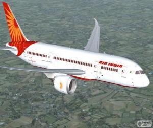 Puzzle Air India est la principale compagnie aérienne de l'Inde