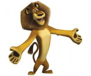 Puzzle Alex, le lion du zoo de Central Park à New York, avec les bras ouverts