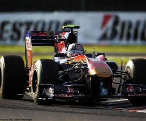 Puzzle Alguersuari - Toro Rosso - Suzuka 2010