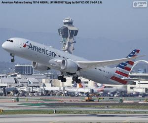 Puzzle American Airlines