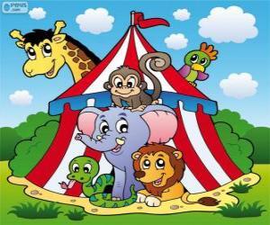 Puzzle Animaux de cirque