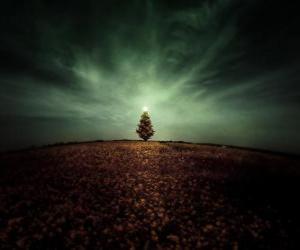 Puzzle Arbre de Noël dans le terrain