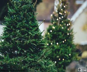 Puzzle Arbres de Noël avec des lumières