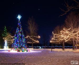 Puzzle Arbres illuminés, Noël