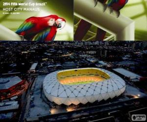 Puzzle Arena Amazônia (50 000), Manaus