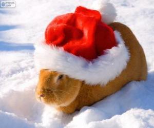 Puzzle avec un chapeau de Santa