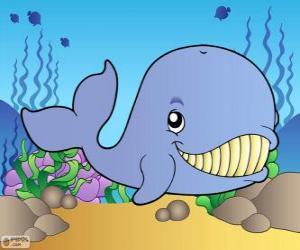Puzzle Baleine souriant