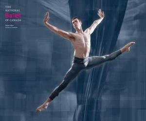 Puzzle Ballet - Danseur dans l'action