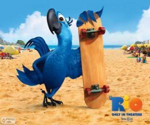 Puzzle Blu est un ara plaisir et le principal protagoniste du film de Rio