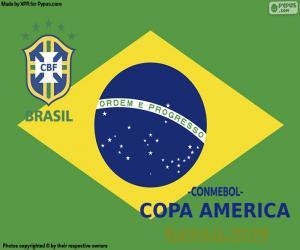 Puzzle Brésil, Champion Copa America 2019
