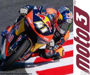 Puzzle Brad Binder, Moto3 2016