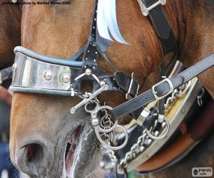 Puzzle Bride de cheval