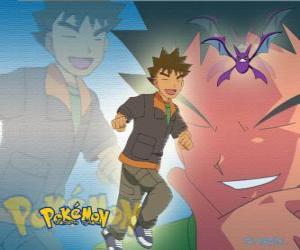 Puzzle Brock, origine le leader de la City Gym étain (étain), spécialisée dans le roc Pokémon de type.