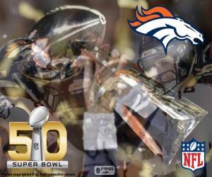 Puzzle Broncos, champion Super Bowl 2016