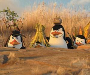 Puzzle Camouflé Penguins
