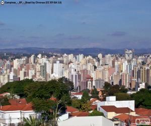 Puzzle Campinas, Brésil
