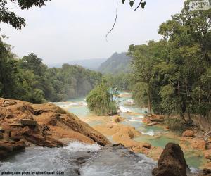 Puzzle Cascades de Agua Azul, Mexique