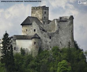 Puzzle Château de Niedzica
