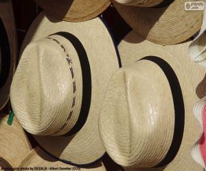 Puzzle Chapeau Panama