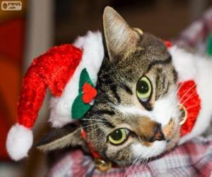 Puzzle Chat avec un chapeau de Père Noël