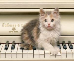 Puzzle Chaton jouant sur un piano