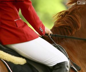 Puzzle Cheval et cavalier