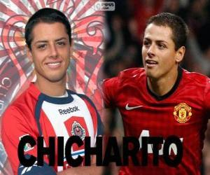 Puzzle Chicharito