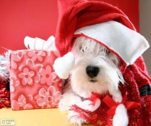 Puzzle Chien avec un chapeau de Père Noël et ses cadeaux