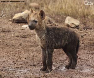 Puzzle Chiot de hyène
