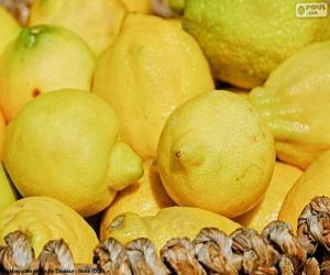 Puzzle Citrons
