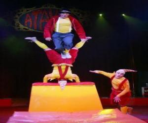 Puzzle Clowns acrobates