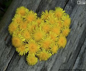 Puzzle Coeur formé par le pissenlit