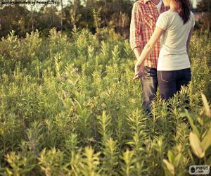 Puzzle Couples dans le domaine
