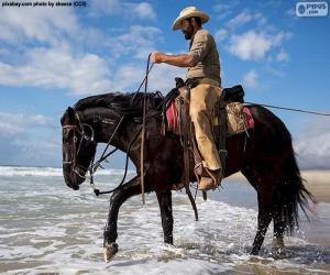 Puzzle Cowboy dans la mer