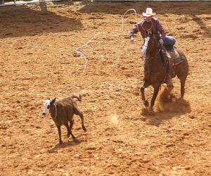 Puzzle Cowboy en montant un cheval et en recueillant une bête avec le lasso