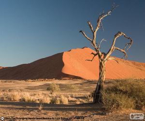 Puzzle Désert du Namib, Namibie