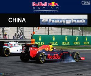 Puzzle D. Kuyat Grand Prix de Chine 2016