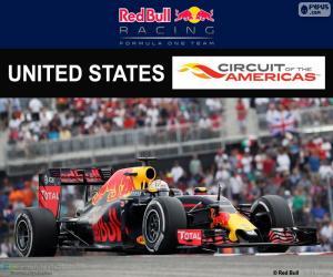 Puzzle D. Ricciardo, GP États-Unis 16