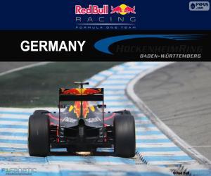Puzzle D. Ricciardo, GP d'Allemagne 2016