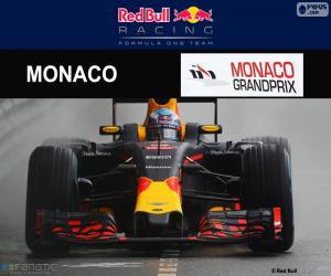 Puzzle D. Ricciardo, G.P de Monaco 2016
