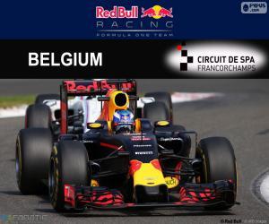 Puzzle Daniel Ricciardo GP Belgique 2016