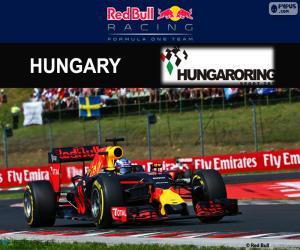 Puzzle Daniel Ricciardo, GP Hongrie 2016