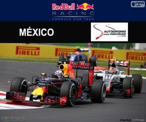 Puzzle Daniel Ricciardo, GP Mexique 2016