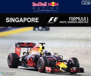 Puzzle Daniel Ricciardo, GP Singapour 16