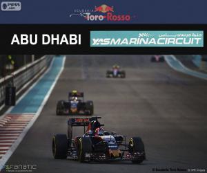 Puzzle Daniil Kvyat, GP Abu Dhabi 2016