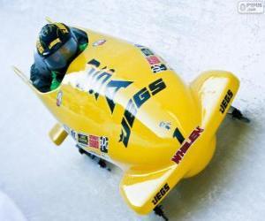 Puzzle Descente en bobsleigh ou bob