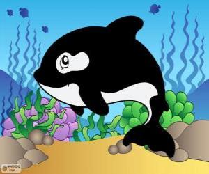 Jeux de puzzle de animaux marins casse t tes - Dessin d orque ...