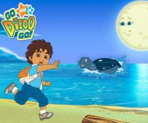 Puzzle Diego sur la plage et une tortue marine dans l'eau